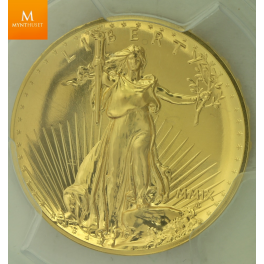 20 Dollar 2009 ULTRA HIGH RELIEF MS70 !!